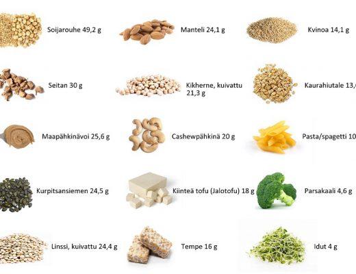 proteiinin lähteet vegaani