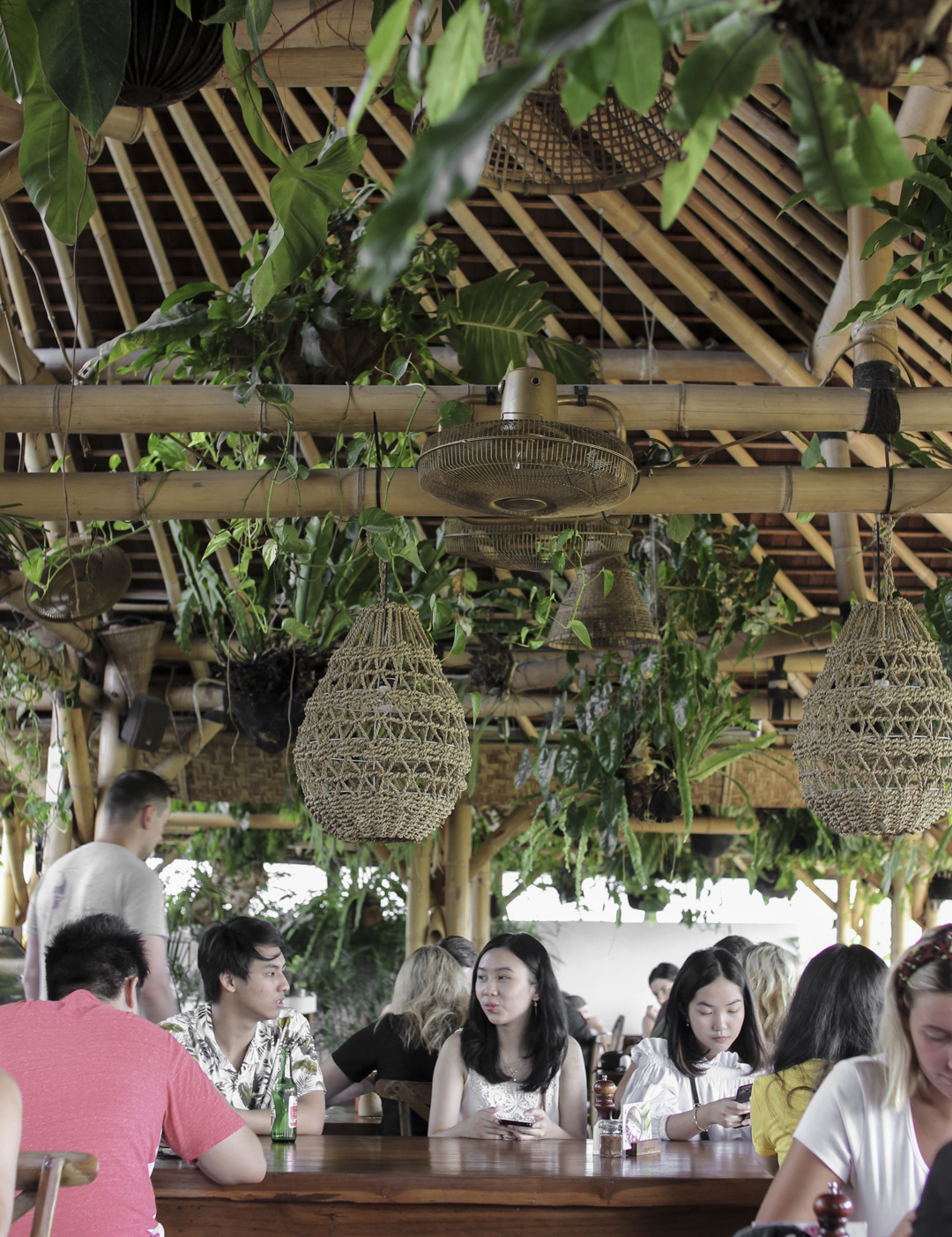 Shelter Bali